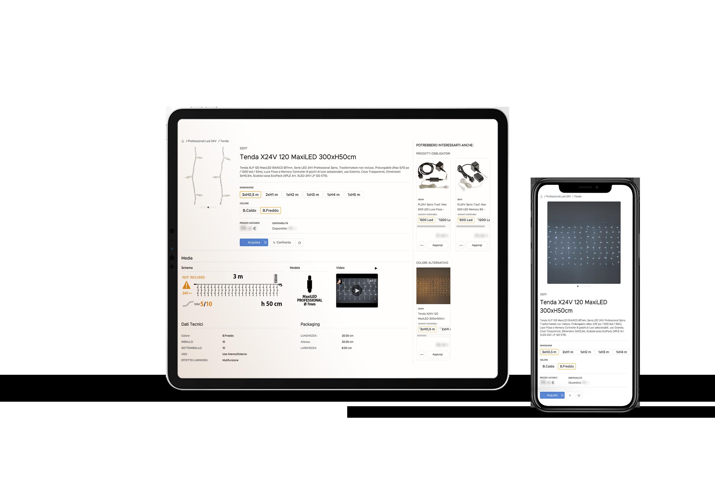 E-commerce B2B e B2C